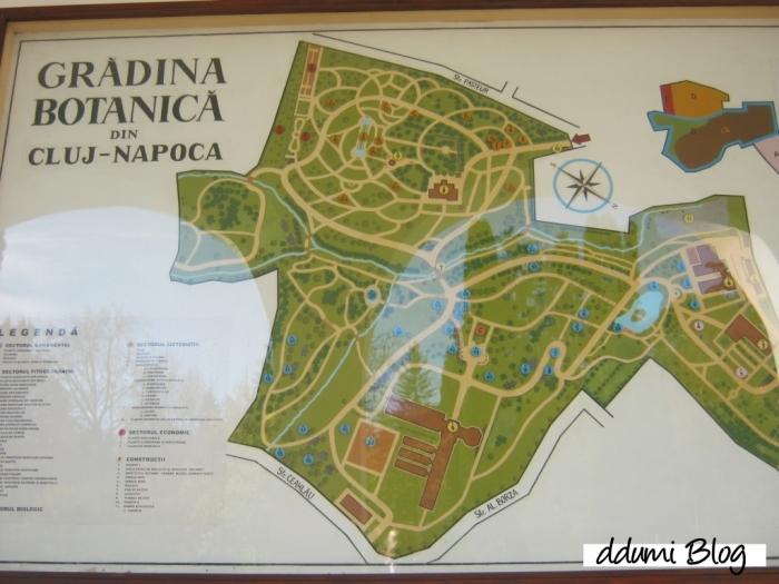 recreere-in-gradina-botanica-alexandru-borza-01