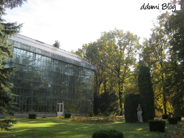 recreere-in-gradina-botanica-alexandru-borza-06