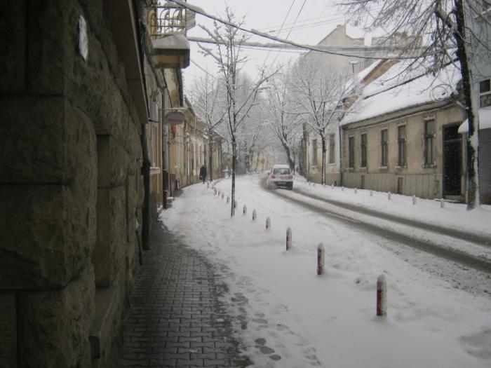 iarna-in-gradina-botanica-alexandru-borza-1