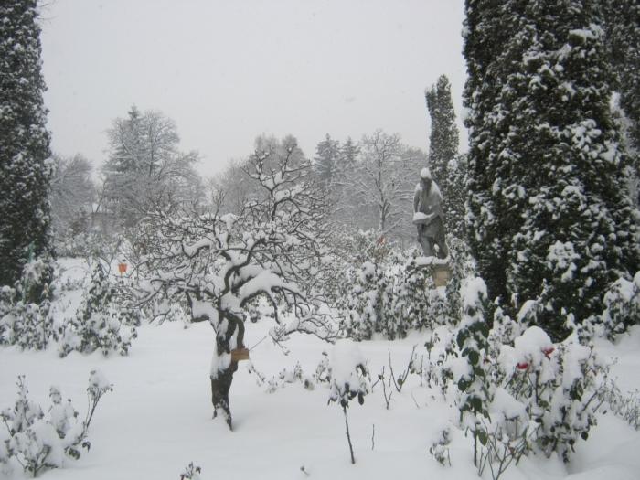 iarna-in-gradina-botanica-alexandru-borza-2