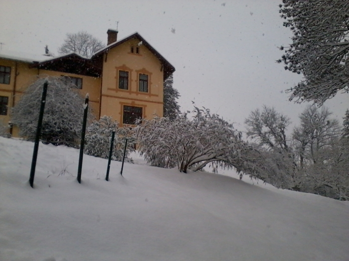 iarna-in-gradina-botanica-alexandru-borza-5