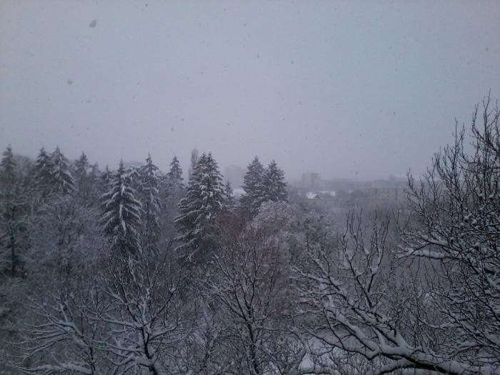 iarna-in-gradina-botanica-alexandru-borza-7