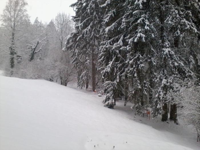 iarna-in-gradina-botanica-alexandru-borza-9