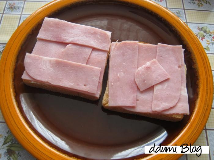 sandwich-cu-sunca-si-cascaval-02