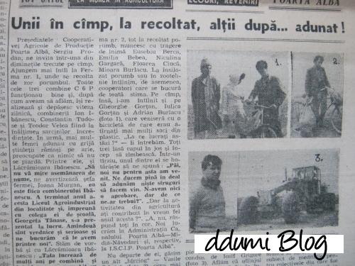 ziar-dobrogea-noua-12-oct-1989-2