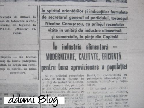 ziar-dobrogea-noua-12-oct-1989-4