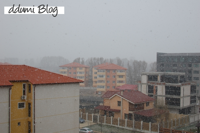 ninsoare-in-luna-martie-02
