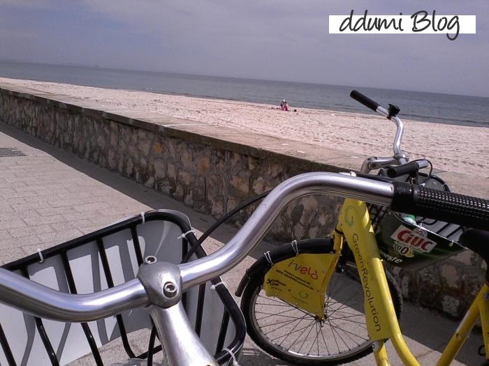 cu-bicicleta-ivelo-la-plimbare-01