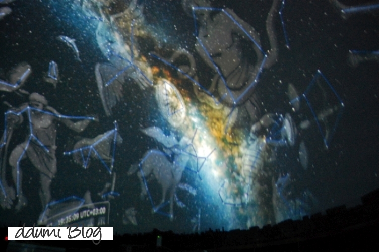 delfinariul-planetariul-si-micro-rezervatia-din-constanta-12